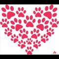 Kibblehouse Stay & Play dog boarding & pet sitting