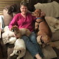 Dog Lover In NE Oakland County, MI dog boarding & pet sitting
