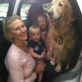 Golden Rule DogMa dog boarding & pet sitting