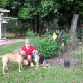 Critter Care dog boarding & pet sitting