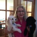 Love's Weekend Pet Sitting dog boarding & pet sitting