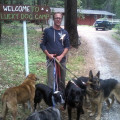 Lucky Dog Camp A Fun Dog Getaway! dog boarding & pet sitting
