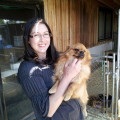 Loving Care; Lifetime Experience dog boarding & pet sitting