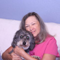Wags and Kisses in NW Austin dog boarding & pet sitting