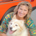 Dogs are Family dog boarding & pet sitting