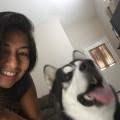 Royal Pet Care dog boarding & pet sitting