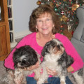 Pampering for Your Pooch RVA dog boarding & pet sitting