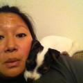 Pampered in Pasadena dog boarding & pet sitting