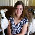Hound Town - No New Reservations dog boarding & pet sitting