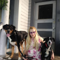 Denise's Doggie Care dog boarding & pet sitting