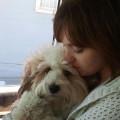 Sit-Fetch-Stay dog boarding & pet sitting