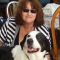 Au bonheur de Médor dog boarding & pet sitting