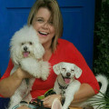 Doggy Paradise dog boarding & pet sitting
