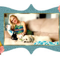 Toy & Small Dog Haven dog boarding & pet sitting
