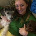 Vet Assistant & Cuddle Bug! dog boarding & pet sitting