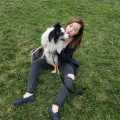 Paw-some Love in NYC dog boarding & pet sitting