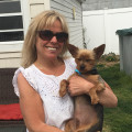 Jen's Doggy Daycare dog boarding & pet sitting