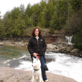 Carol's Canine  Companion dog boarding & pet sitting