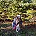 Lassie Girl dog boarding & pet sitting