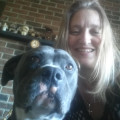 PET LOVING HOUSE RESORT dog boarding & pet sitting