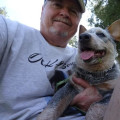 OCK-9Services/Laguna Hills dog boarding & pet sitting