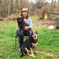 Killarney Run dog boarding & pet sitting