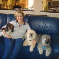 Pat's Pampered Pets dog boarding & pet sitting