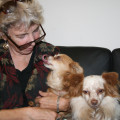 Retired Teacher and Dog Lover dog boarding & pet sitting