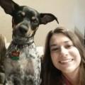 Mila's Desert Playhouse dog boarding & pet sitting