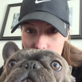 West Loop Home Away From Home dog boarding & pet sitting