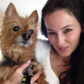 Airport Boarding Services YYZ dog boarding & pet sitting