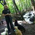 Loving Hudson Valley Pet Care dog boarding & pet sitting
