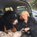 Joanie's Puppy Paw-adise! dog boarding & pet sitting