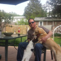 BRENDEN'S BOARDING dog boarding & pet sitting