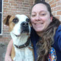 Your dogs are family here! dog boarding & pet sitting