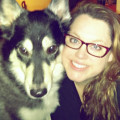 Home is where a Dog lives! dog boarding & pet sitting