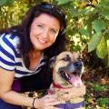 Monadnock Dog Care dog boarding & pet sitting