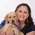 Love & Puppies in Birmingham dog boarding & pet sitting