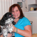 There's No Place Like Home Dog Care dog boarding & pet sitting