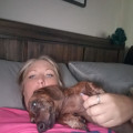 Meet us, you will love us! SPOILED! dog boarding & pet sitting