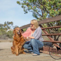Patricia's Excellent Pet Service dog boarding & pet sitting
