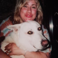 Sandra and Mark's Doggie Paw-ridise dog boarding & pet sitting