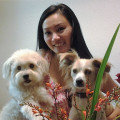 Daciana's Pups dog boarding & pet sitting
