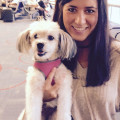 BallardPuppyLove dog boarding & pet sitting