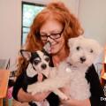 Brooklyn Happy Tails!!! dog boarding & pet sitting