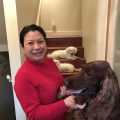 Emily's pet care dog boarding & pet sitting