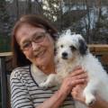 Bark & Play-Gainesville dog boarding & pet sitting