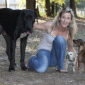 Katharina professional care dog boarding & pet sitting