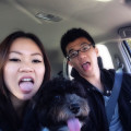 Dog loving couple in Russian Hill dog boarding & pet sitting
