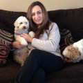Experienced, Caring, and Fun Loving dog boarding & pet sitting